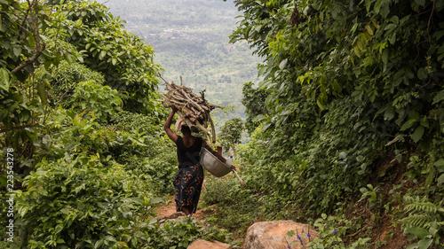 Foto op Canvas Weg in bos bois ramassé pour une cérémonie au bénin