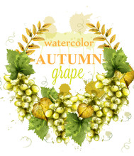 White Grapes Wreath Watercolor...