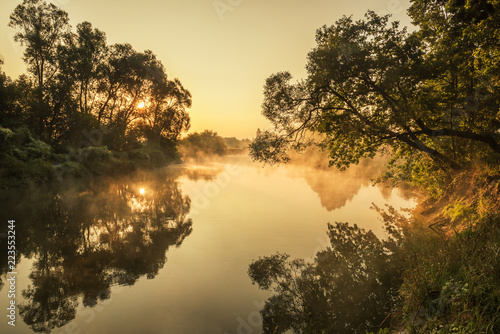 Early misty gentle morning on the river. soft light and a tree above the water with rays of light through the branches.