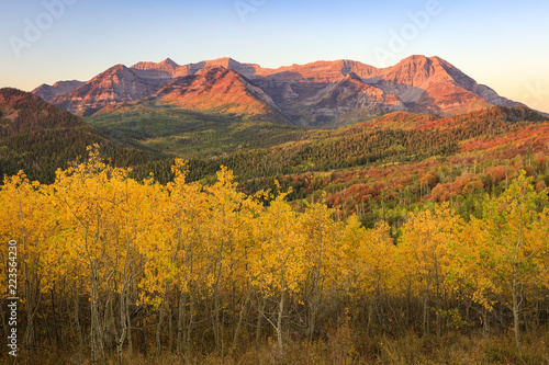 Autocollant pour porte Brique GOlden fall morning in the Wasatch Mountains, Utah, USA.
