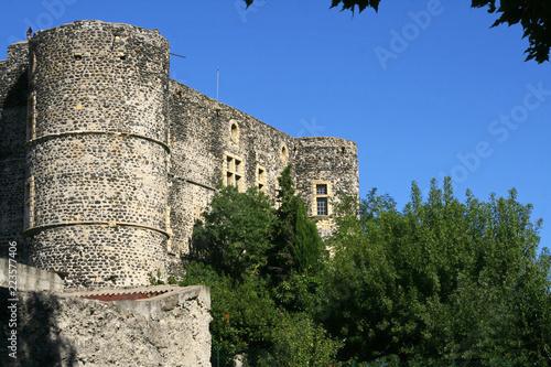 Foto op Plexiglas Kasteel Le château d'Alba-La-Romaine