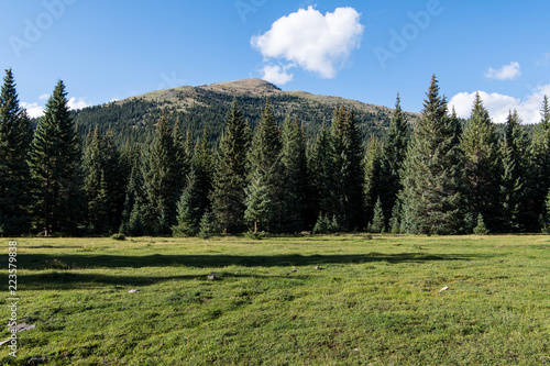 Foto  Idyllic alpine meadow and mountain peak under a perfect blue sky with puffy whit