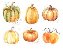 Set Pumpkin, Watercolor Hand D...