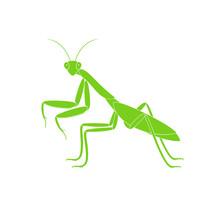 Mantis Logo. Isolated Mantis On White Background