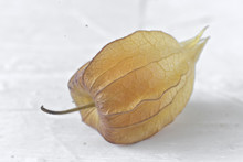 Close-up Of Gooseberry On Table