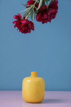Close-up Of Flowers Over Vase Against Blue Background