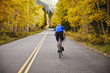 Rear view of senior man riding bicycle on country road amidst trees