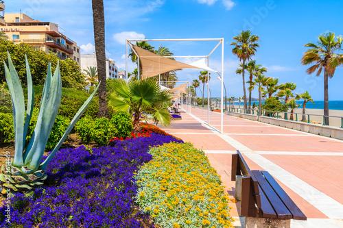 Fotografía Flowers on beach promenade in Estepona town on Costa del Sol, Spain