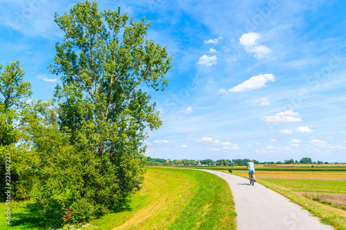Poster Rivière de la forêt Woman cycling on path along green fields and Vistula river near Cracow city on sunny summer day, Poland