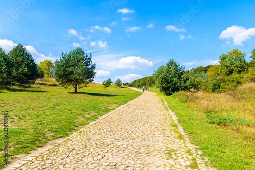 Fotografiet  Walking path to Rabsztyn castle located in small village in southern Poland