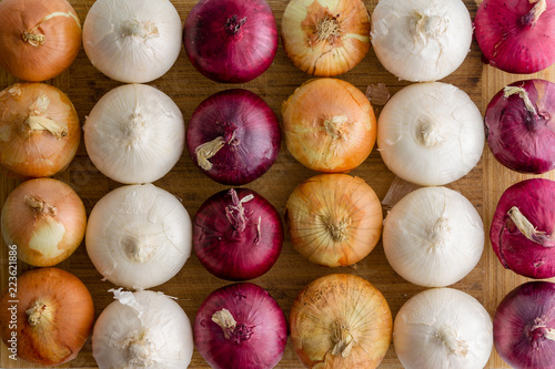 Photo  Neat alternating rows of different colored onions