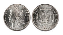 Morgan Silver Dollar.