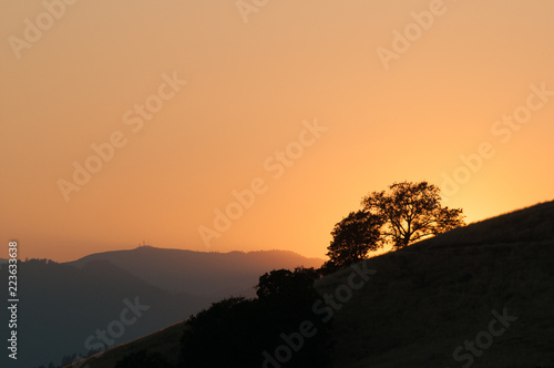 Sunset in rural California with oak tree in silhouette