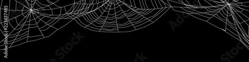 Large white spider web on black - 3d render Canvas-taulu