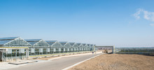 Panorama And Appearance Of The Greenhouse In The Day Time. Facade And Glass Roof Of Hothouse