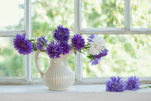 Purple Asters In  Jug On  Windowsill