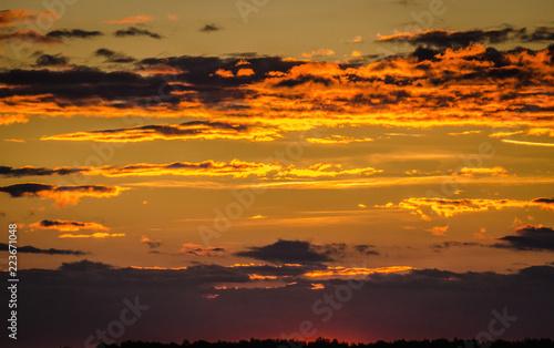 Fotobehang Oranje eclat Sunny Transcarpathia