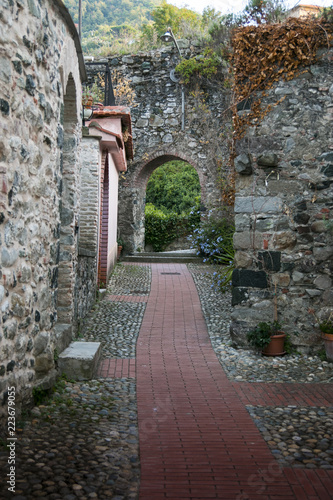 Poster Smal steegje narrow medieval alley with arch, in the town of Levanto, Italy.