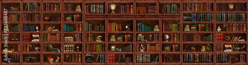 Bookcase Canvas Print