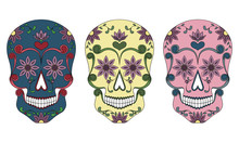 Set Of Three Mexican Skulls On A White Background.