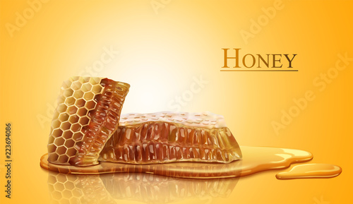 Honeycomb and sweet pure honey Wallpaper Mural