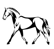 Running Horse Black And White ...