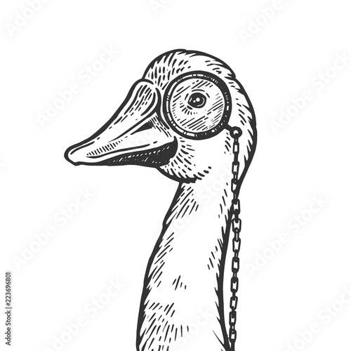 Goose bird witn monocle engraving vector illustration Fototapet