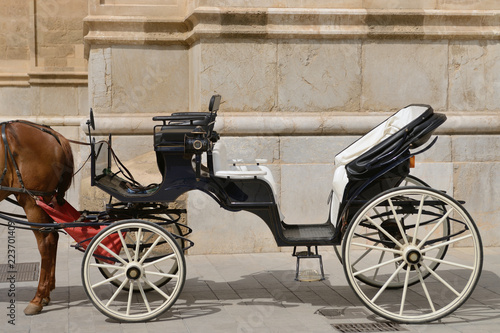 Fotografia horse harnessed to an old carriage