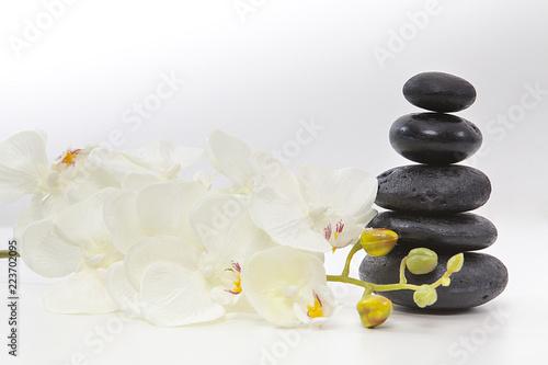 beyaz orkide ve spa taşları