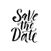 Save The Date. Wedding Phrase. Brush Lettering. Vector Illustration.