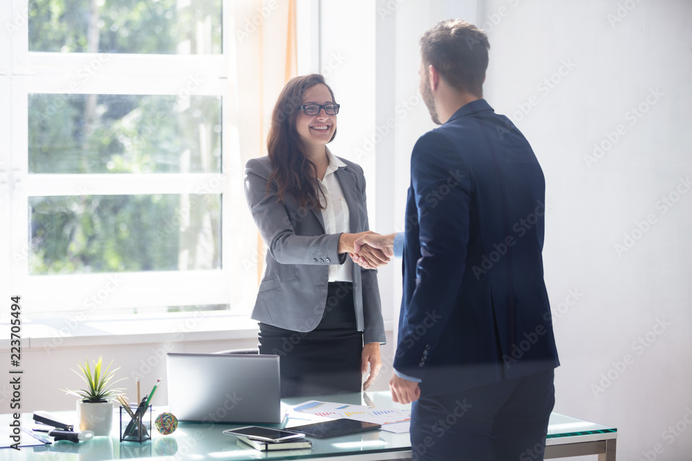 Valokuva  Businesswoman Shaking Hands With Her Partner