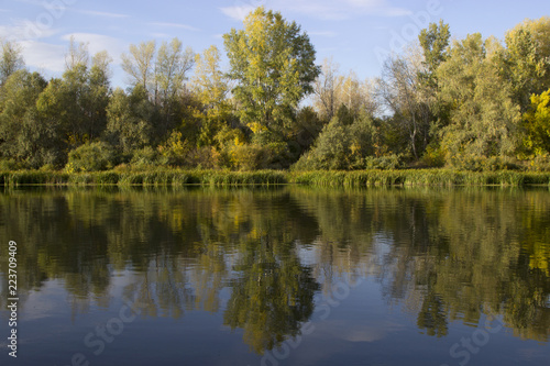 Fototapeten Forest river beautiful autumn landscape. blue river and green forest