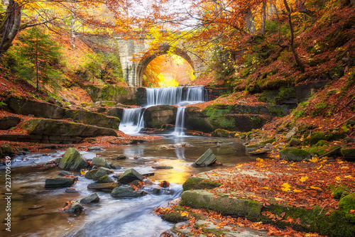 Foto op Canvas Rivier Autumn fairytale by the river / Autumn river with beautiful cascades of water and an old bridge near Sitovo village, Bulgaria