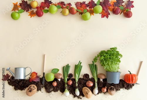 Fotografie, Obraz  Autumn harvest background