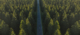 Fototapeta Fototapety na ścianę - Aerial view from above of country road through the green forest