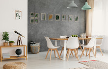 Modern, White Dining Chairs Around A Large Wooden Table In A Botanic Dining And Living Room Interior With Gray Wall