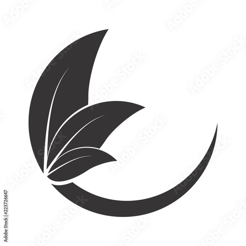 C letter with leaf logo Canvas Print