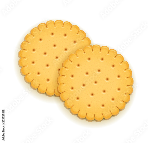 Two delicious round biscuit. Sweet cookie. Cookies. Realistic Fototapete