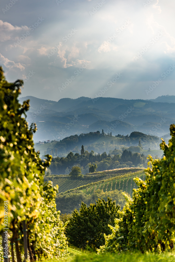 Austria Vineyards Sulztal an der Weinstrasse south Styria , wine country tourist spot.