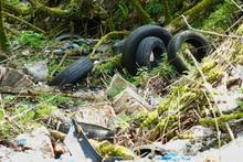 Wilde Müllkippe Im Wald - Verbotene Entsorgung Von Altreifen Und Sonstigen Unrat