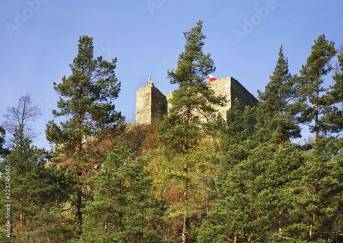 Spoed Foto op Canvas Natuur Ruins of castle in Muszyna. Voivodeship Lesser Poland. Poland