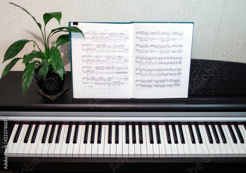 Poster Muziekwinkel 2018.09.18, Moscow, Russia. An open book of sheet music on the piano. A composition of the sheet music, flower and the piano keyboard. Elements of interior of the music classroom.