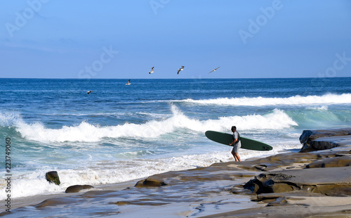 Pelicans Greet a Surfer in La Jola Canvas-taulu