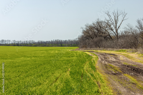 Foto op Aluminium Blauw The ground road on the side of farm field in the early springtime