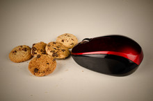 Mouse Eating Cookies