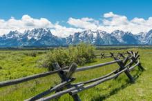 Pasture In Grand Teton Nationa...