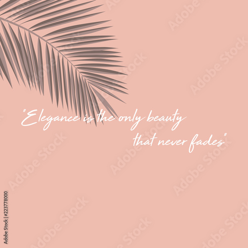 elegance is only beauty that never fades Lerretsbilde