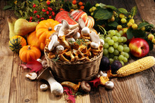 Autumn Nature Concept. Fall Fruit, Vegetables And Variety Of Raw Mushrooms On Wood. Thanksgiving Dinner.