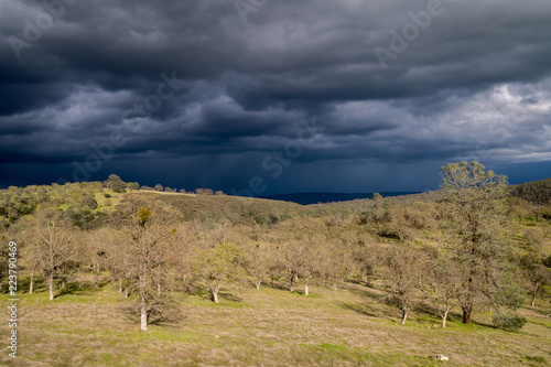 Foto  Green hill under dark clouds