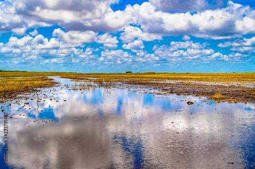 Fotografija  Everglades swamp channels without mangroves, Miami, USA